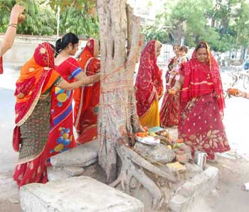 Vrat Purnima Vrat Savitri
