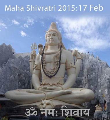 Maha Shivratri Celebration in Houston