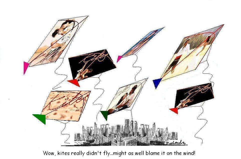 Kites Didnt Fly